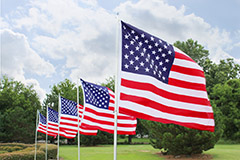 photo of flags on a grassy area